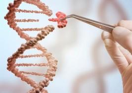Logran revertir la sordera con una terapia genética