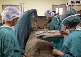 El trasplante autólogo de células madre permite tratar la parálisis cerebral