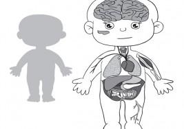 7 síntomas que puedes detectar si tu hijo tiene cáncer de hígado