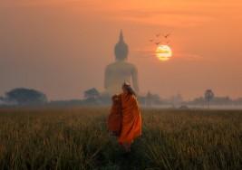 La flecha envenenada, una historia budista que te enfrentará a tu yo