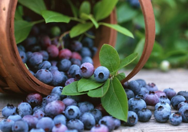 Arándanos contra la artritis: ¿se puede sanar comiendo?