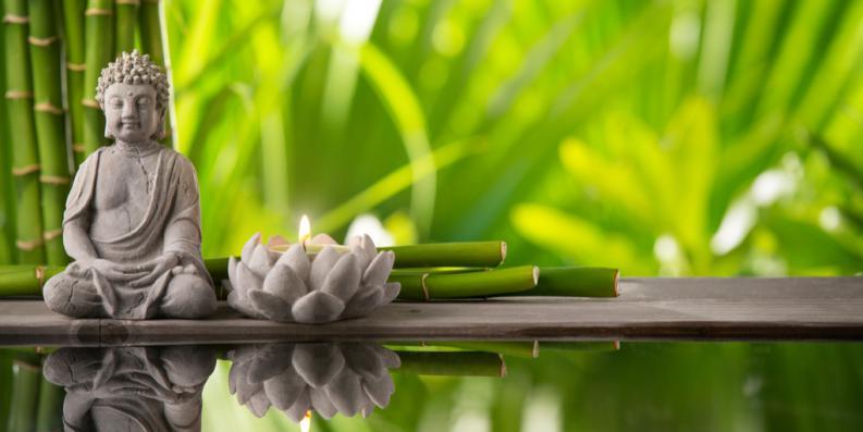 7 lecciones que el budismo nos ense a acerca de encontrar el xito todos somos uno. Black Bedroom Furniture Sets. Home Design Ideas