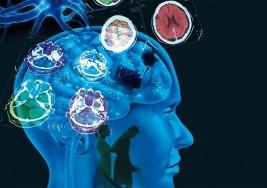 Israel: Estudio revela posible desencadenante de la Esclerosis múltiple