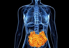 Microbios del intestino trataría esclerosis múltiple