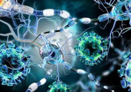 Seis cosas que no sabes sobre la esclerosis múltiple