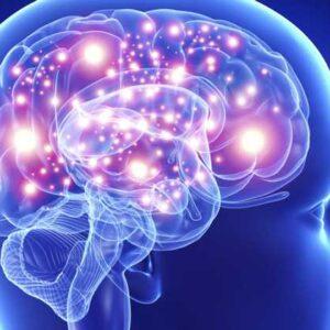 Descripción gráfica del las neuronas en el cerebro