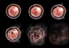 El estrés enferma: los científicos explican cómo nuestras células se ven afectadas y bajan nuestras defensas (provocando éstas enfermedades)