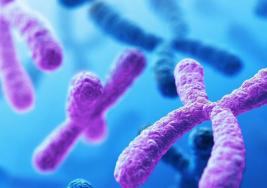 El genoma de las personas nacidas con Síndrome de Down compensa los efectos de tener un cromosoma 21 extra