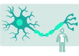 Las Jornadas de Esclerosis Múltiple llevan la enfermedad a la Onubense