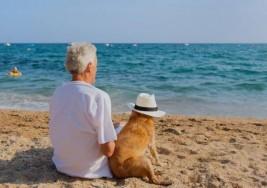 El Sol evita la esclerosis múltiple, según estudio
