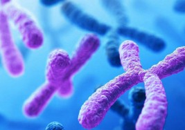 Síndrome de Down: Un cromosoma de más