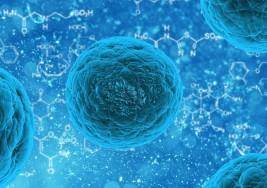 El trasplante de células madre cambia el escenario del tratamiento de la esclerosis múltiple