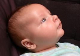 EEG en el autismo: a los tres meses de vida ya refleja particularidades