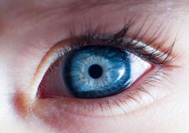 Hallan un vínculo entre la reacción de la pupila a la luz y el autismo