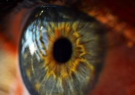 Ojos impresos en 3D, nueva cura contra la ceguera