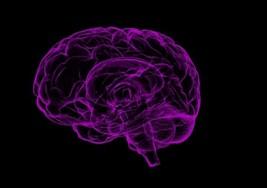 Niveles de hierro en el cerebro puede predecir riesgo de esclerosis múltiple