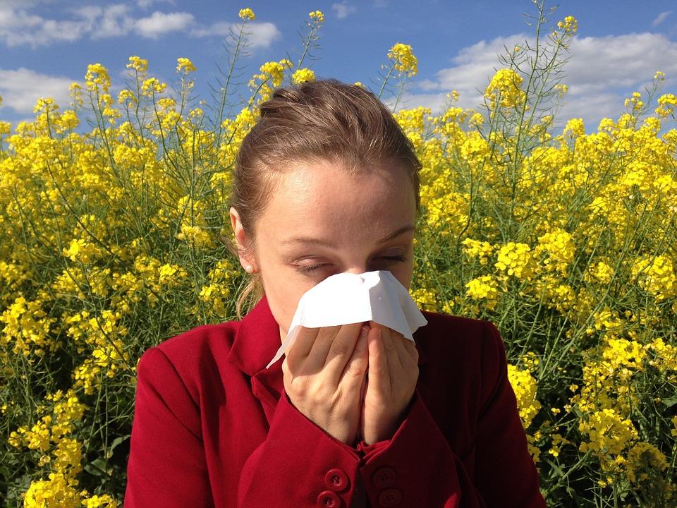 Cómo curar las Alergias y no sólo tapar sus síntomas