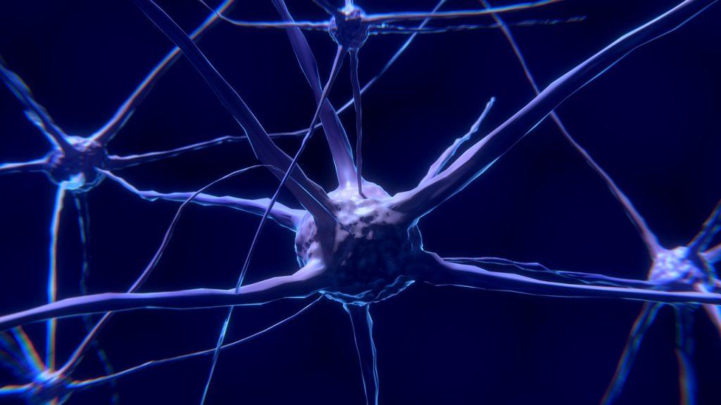 La esclerosis múltiple no debería asociarse a una silla de ruedas