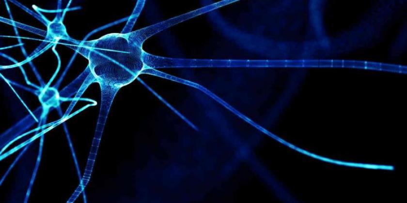 DIF de Aguascalientes imparte plática virtual sobre esclerosis múltiple